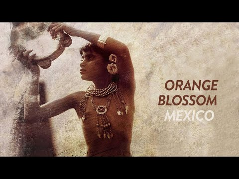 Orange Blossom - Mexico (English, Türkçe Lyrics)