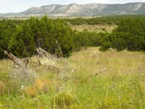 Beautiful New Mexico Ranch Land For Sale
