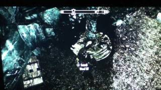 Repeat youtube video Skyrim: Where To Harvest Wood Elf Blood