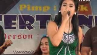 Benalu Cinta - Brother Entertainment by KoploChannel