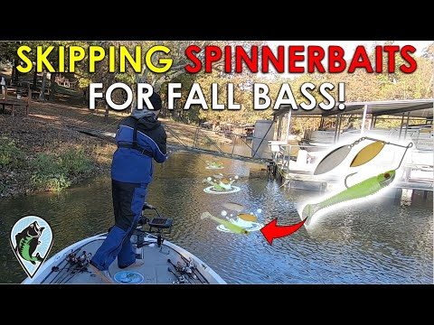 Unique Twist To Classic Fall Pattern | Fall Bass Fishing Tips
