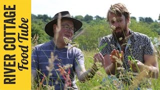 Foraging at River Cottage | Paul West & John Wright