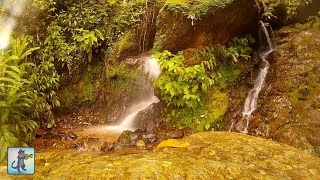 2 HOURS of Relaxing Waterfall Sounds & The Best Relax Music ~ Sleep, Study, Meditation, Relaxation