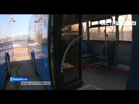 """""""Вести: Приморье"""": Владивосток третьим в стране встречает новый вид городского транспорта"""