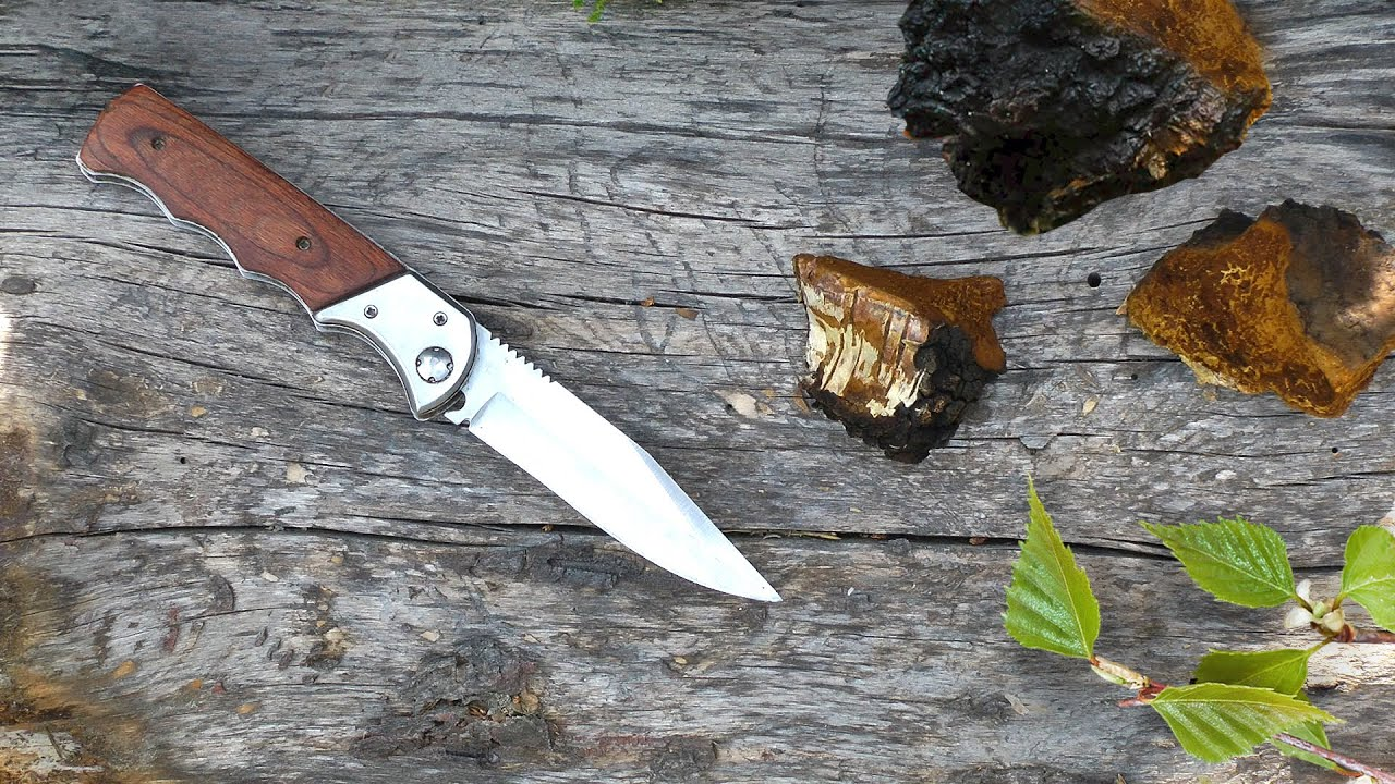 Березовая чага | Секреты таежных охотников | Рецепт чая