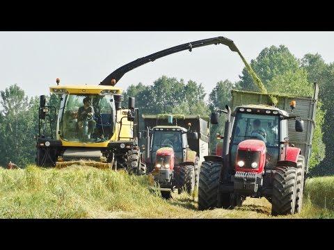 Barley Silage   New Holland FR9060 Yellow Bull + Discbine 520   MF 7480/7499 + Fendt 930