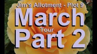 Jim's Allotment - Plot 9 - March Tour Part 2 - Rhubarb, Asparagus, Kale & Tour