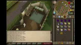 RuneScape Money Making Guide (up to 200k every 20 mins)