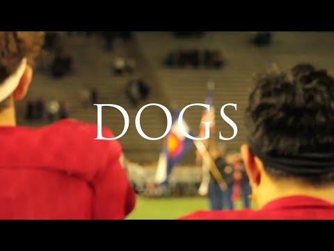 'DOGS' Full Documentary