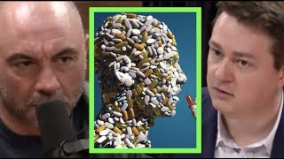 The Solution to the Opioid Crisis | Joe Rogan & Johann Hari