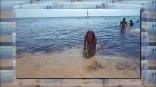 отдых в Феодосии 2012 гостиница Пять кипарисов(, 2014-05-24T11:28:13.000Z)