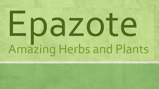 Epazote Health Benefits - Amazing Herbs and Plants - Epazote nutrition facts