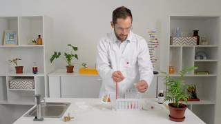 Acid base neutralisation reaction experiment