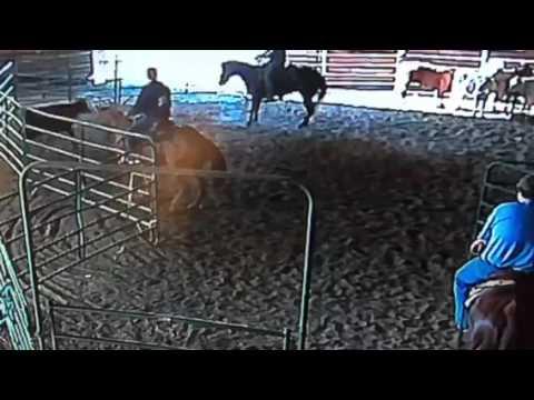 Tj on gray horse