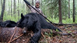 Josh Bowmar SPEARS GIANT BEAR  On The Ground! (Original) EPIC HUNT!