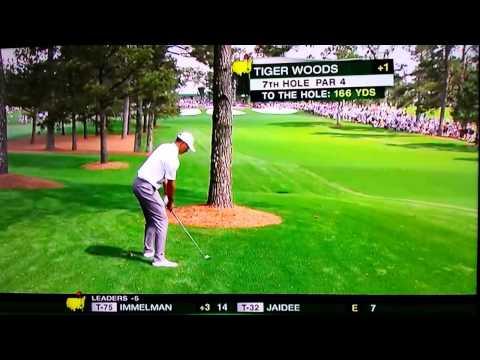 Tiger Woods Wonder Shot From Behind Tree Amazes Jack Nicklaus