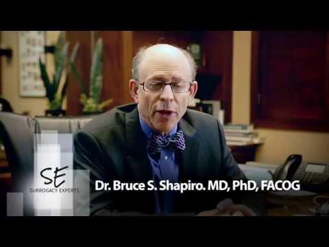 Dr. Shapiro - How Does Egg Donation Work - YouTube