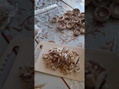 можно ли замораживать грибы шампиньоны