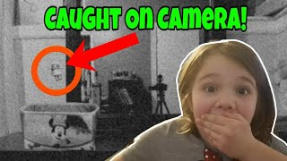 LOL Dolls Caught Moving On Camera! Kid Reacts to LOL Dolls Moving! lol surprise skit