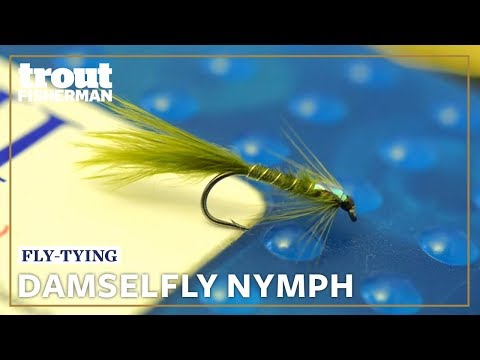 Damselfly Nymph