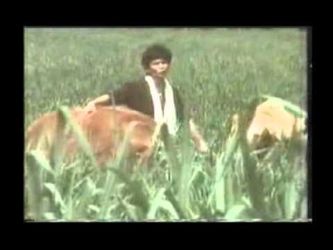 Sudirman - Anak Gembala