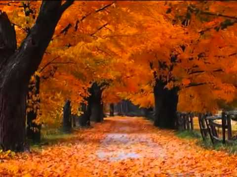 Jose Luis Perales - Cancion de otoño - YouTube.flv