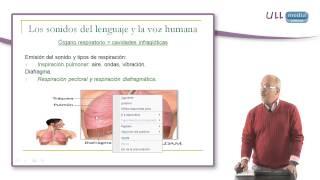 Los sonidos del lenguaje y la voz humana