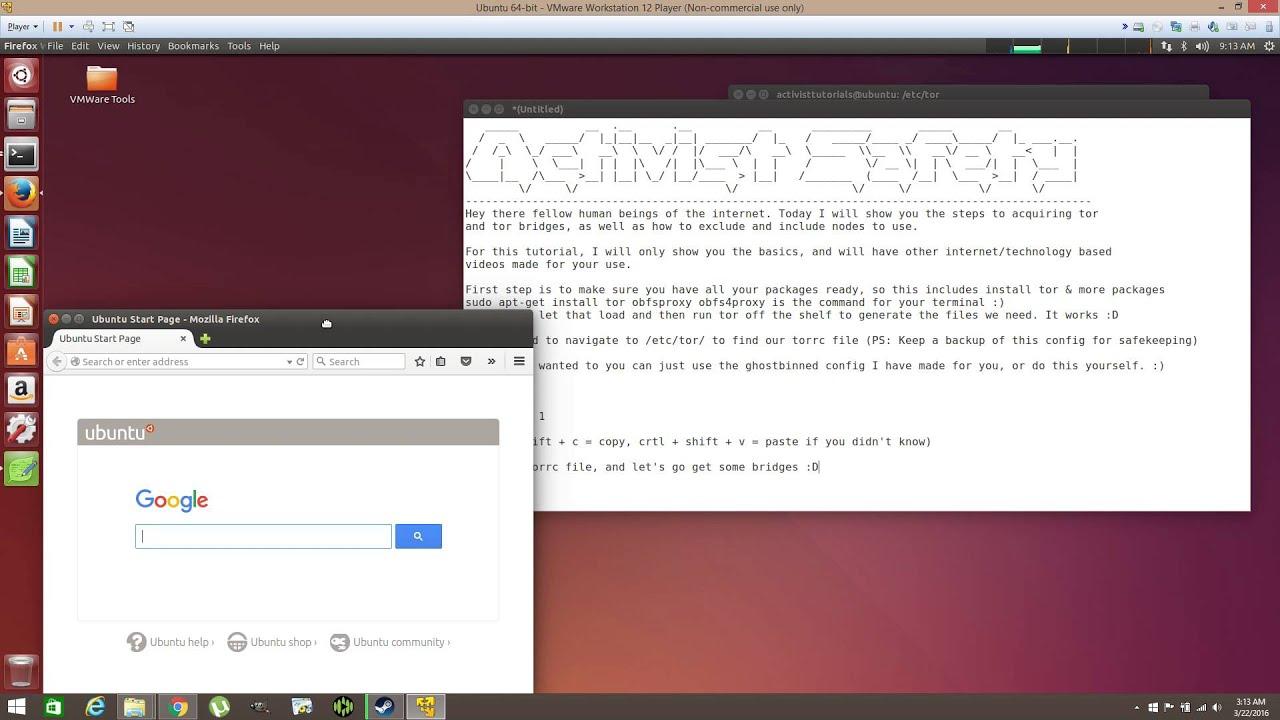 obfsproxy tor browser hidra