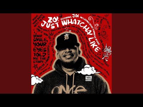 Just Whatcha Like (David Harness Dub) (feat. Joi)