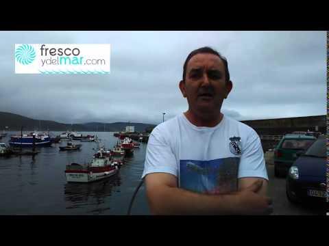 Fresco y del Mar con la Cofradía de Pescadores de Fisterra