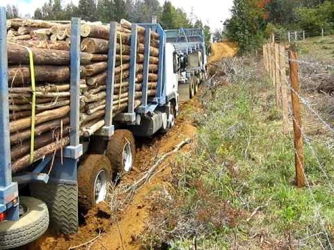 volvo FM 340 enterrado y patinando (logging trucks).(camiones forestales) Videos De Viajes