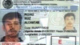 Ley de caminos puentes y autotransporte federal en México