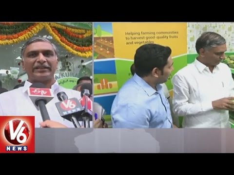 Minister Harish Rao Launches Mana Kuragayalu Store In Hyderabad || V6 News