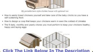 Building A Chicken Coop Winter Discount + Bouns