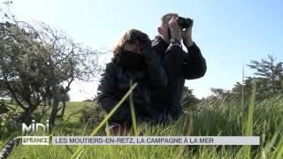 SUIVEZ LE GUIDE : Les Moutiers en Retz, la campagne à la mer