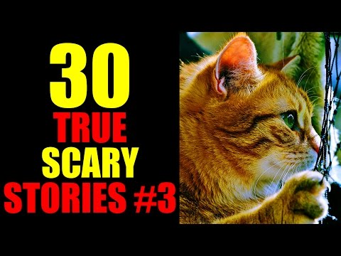 30 TRUE SCARY STORIES #3