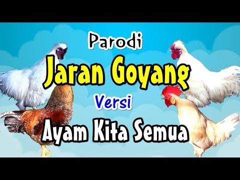 Jaran Goyang | Versi Ayam Kita (Nella Kharisma Lewat) # Parodi Lucu