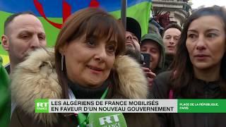 Tous contre Bouteflika thumbnail