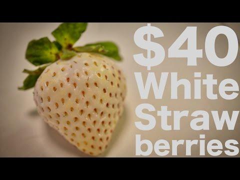 Japanese White Strawberries...for $40?!?!