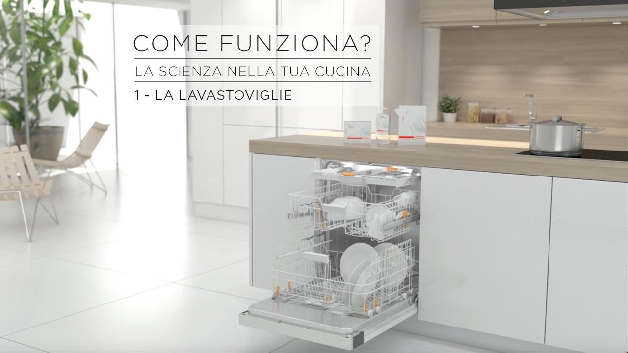 Come funziona la scienza nella tua cucina la lavastoviglie