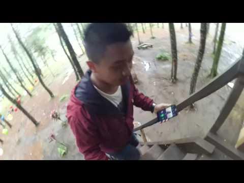 Wisata Hutan Pohon Pinus Songgon, Banyuwangi #Vlog Trip and Adventure #Part 2