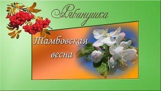 Тамбовская весна
