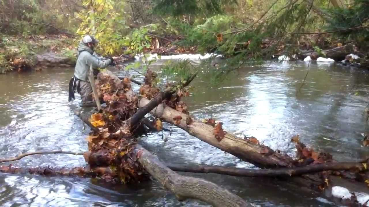 Pennsylvania steelhead fishing lake erie tributaries for Erie pa steelhead fishing report