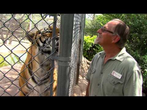 Arizona Wildlife Views - 2016 Show 3