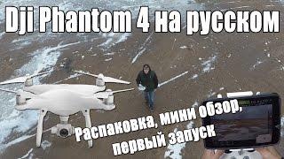 Мини обзор, первый запуск Dji Phantom 4 на русском(, 2016-03-19T14:48:48.000Z)