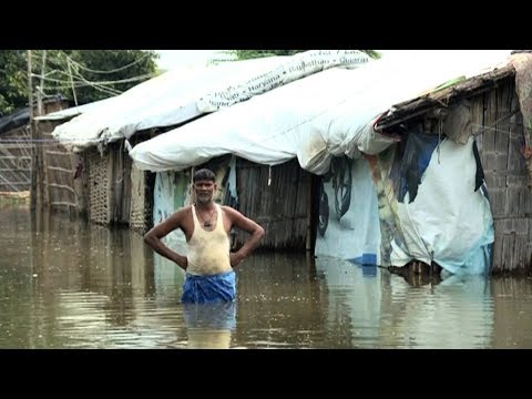 "1,200 Die as ""Devastating"" Climate Change-Linked Floods Submerge Parts of South Asia"