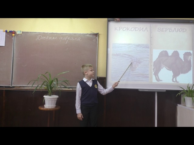 Изображение предпросмотра прочтения – ПавелЕрмаков читает произведение «Что ни страница, — то слон, то львица» В.В.Маяковского