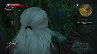 The Witcher 3: Wild Hunt –  No jardim de Freya