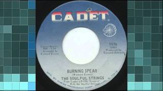 THE SOULFUL STRINGS - BURNING SPEAR (CADET) #(Change the Record) Make Celebrities History
