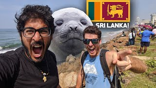 COLOMBO Seal Found! - Sri Lanka's first seal!